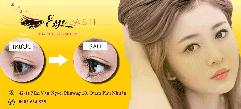 thanh tú eyelash banner 1